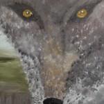 Nabij verleden: wolf
