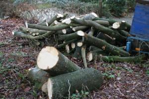 hout voor kunst